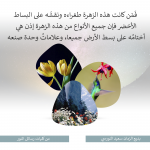Arapça 5